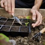How To Winterize Your Garden For A Flourishing Spring Bloom